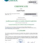 certificat Arpad Dregics